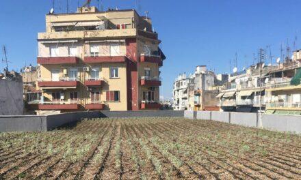 Public bioclimatic buildings in Thessaloniki